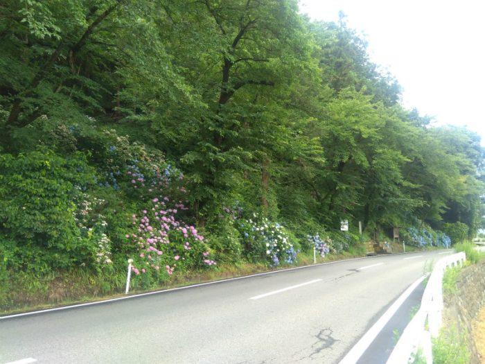 道路脇の釜上地蔵